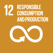 Sustainable Development Goal 12 Ensure sustainable consumption and production patterns